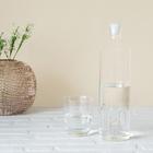 $Botella,H2O,1.2L,borosilicato-24620