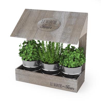 Balvi - Le Marché aux Fleurs huerto urbano para hierbas aromáticas en tú cocina