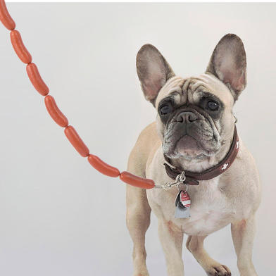 Balvi Dog leash Hot Dog With plastic sausages Plastic/metal 108 cm