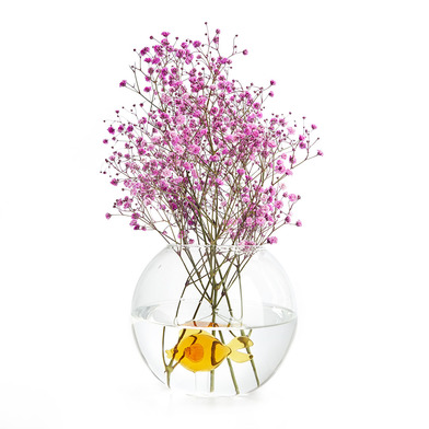 Balvi Vase Fish Flower vase With the figure of a fish Glass Borosilicate 13x15(dia) cm